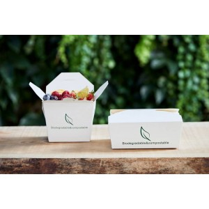 Take away box in carta bio compostabile